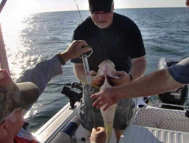 image 9-pound-walleye-burwell-september-2nd-jpg